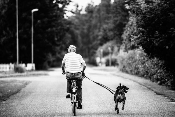 Man riding bike with dog