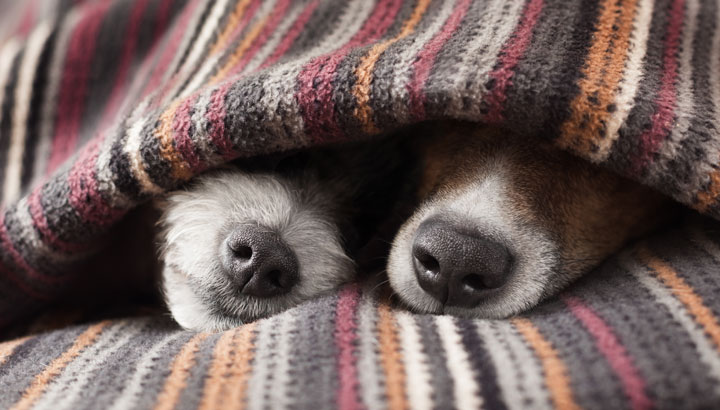 Ask Science: Is Cold Weather Good For Sleep?