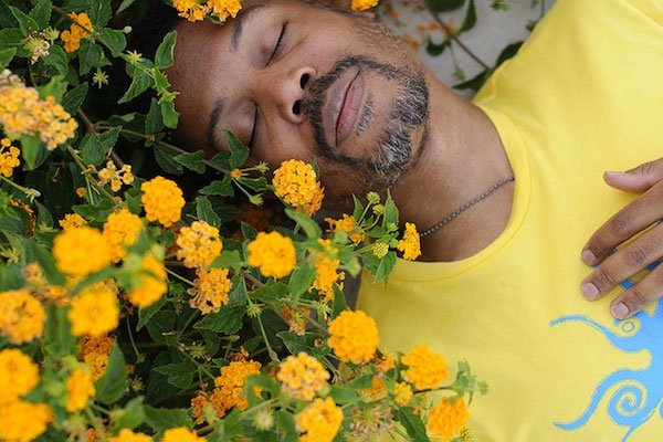 man laying in field of flowers