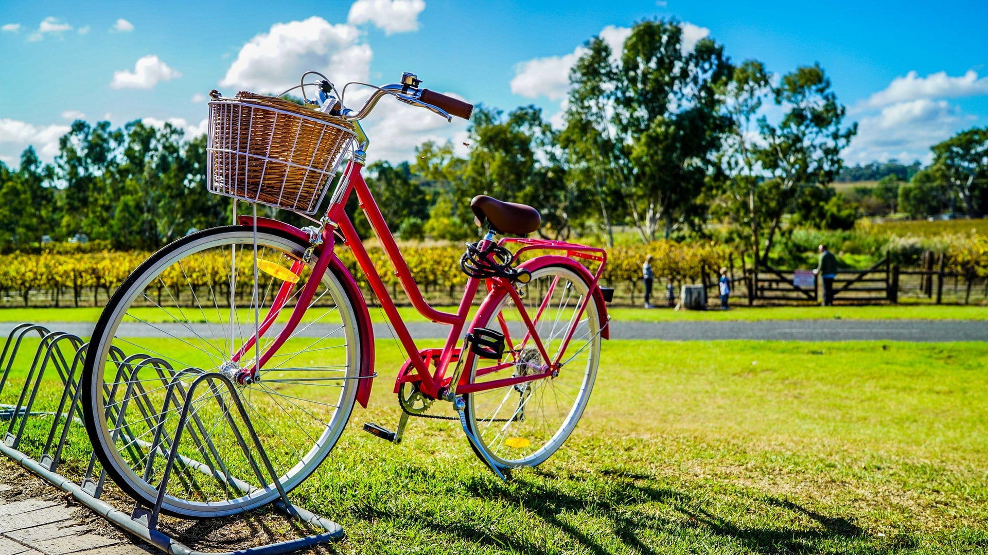 riding-bike-eco-friendly