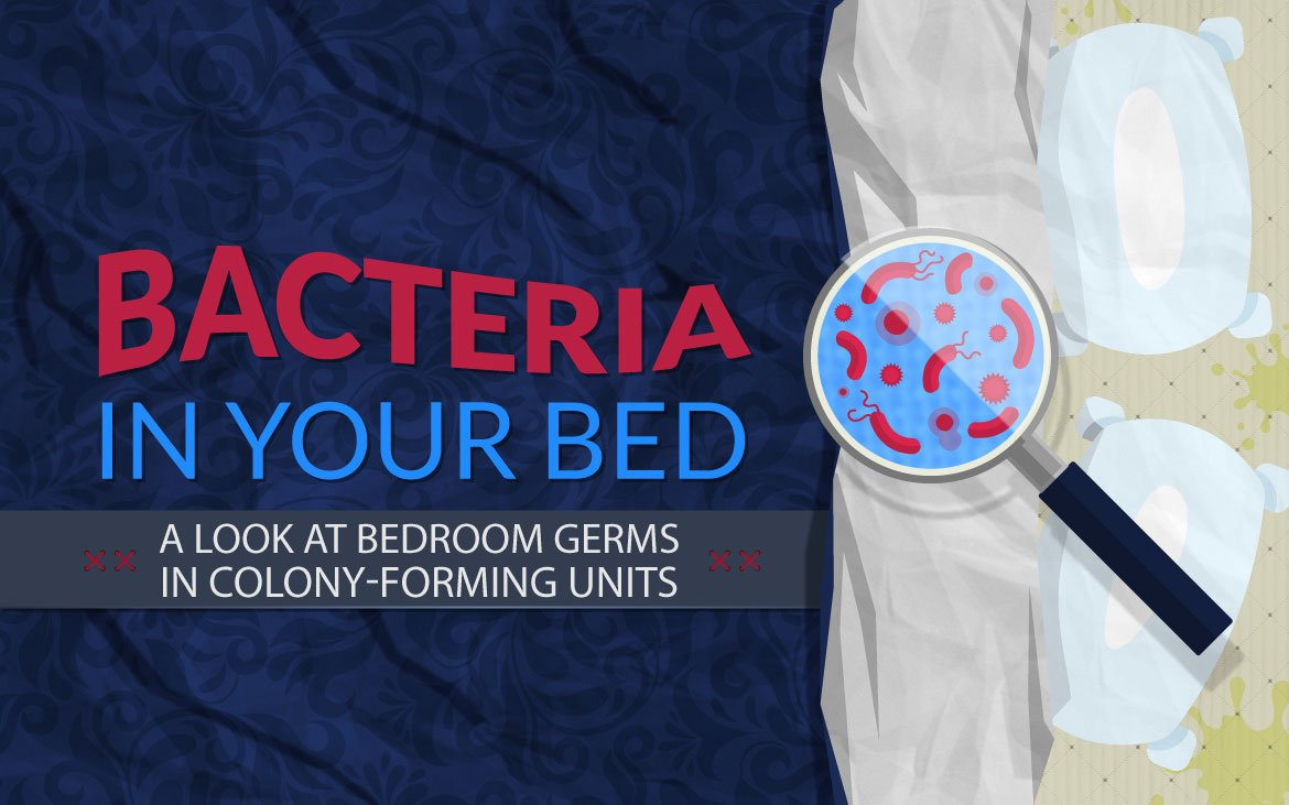 Bacteria in your Bed