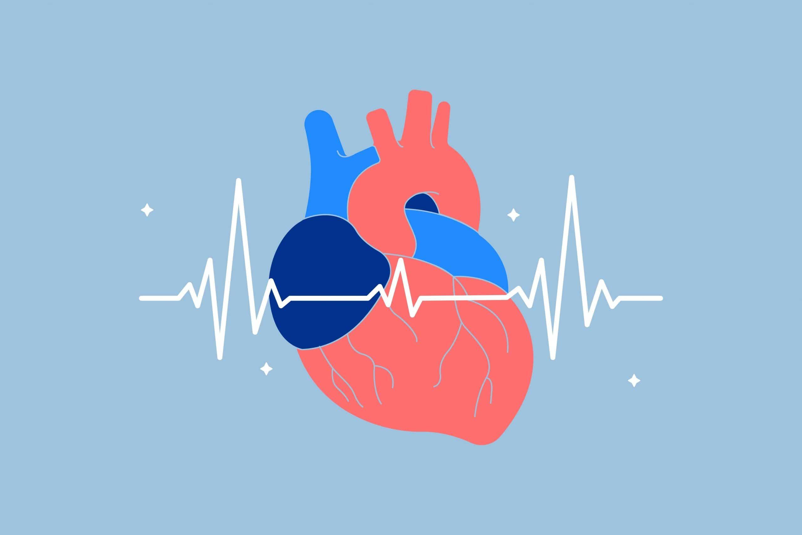Heart Rate Variability and Sleep